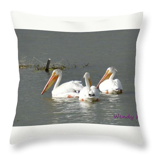 Pelicans Throw Pillow featuring the photograph Pelicans by Wendy Fox