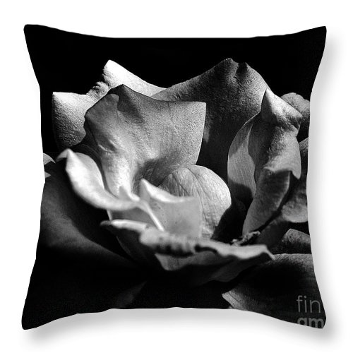 Clay Throw Pillow featuring the photograph Penetrating The Rose by Clayton Bruster