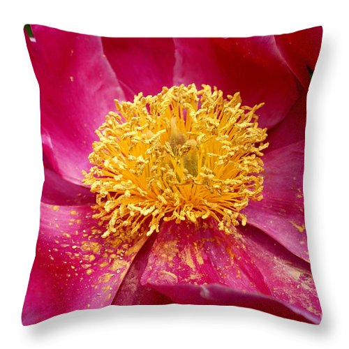 Pink Throw Pillow featuring the photograph Peony Abstract by Valerie Fuqua