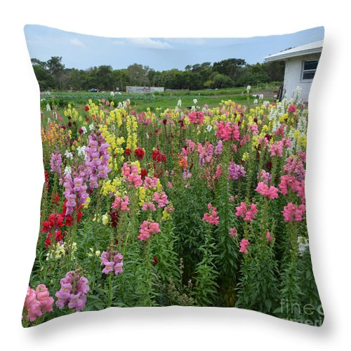 Snapdragons Throw Pillow featuring the photograph Perfect Picture by To-Tam Gerwe