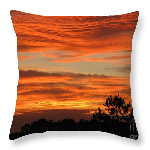 Art For The Wall...patzer Photography Throw Pillow featuring the photograph Perfection by Greg Patzer
