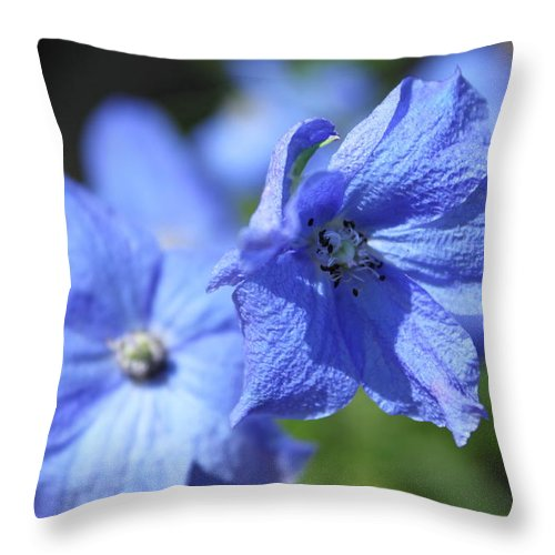 Flower Throw Pillow featuring the photograph Periwinkle Flower by Lauri Novak