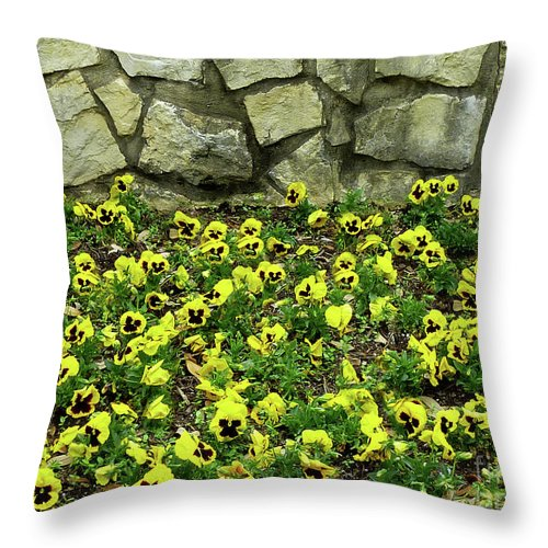 Nature Throw Pillow featuring the photograph Perky Pansies by Lucyna A M Green