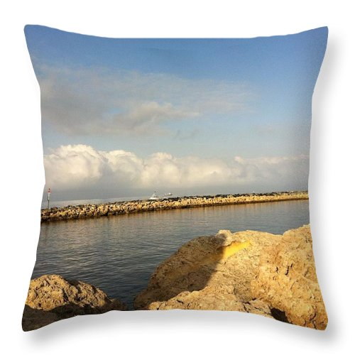 Throw Pillow featuring the painting Perth by Richard Benson