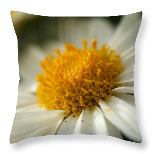 Flower Throw Pillow featuring the photograph Petals And Pollen by Michael McGowan