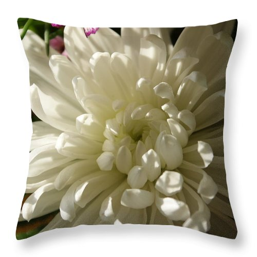 Flower Throw Pillow featuring the photograph Petals Profusion by Cricket Hackmann