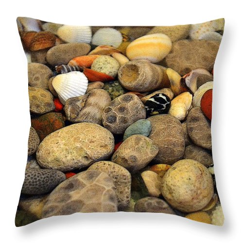 Stone Throw Pillow featuring the photograph Petoskey Stones With Shells Ll by Michelle Calkins