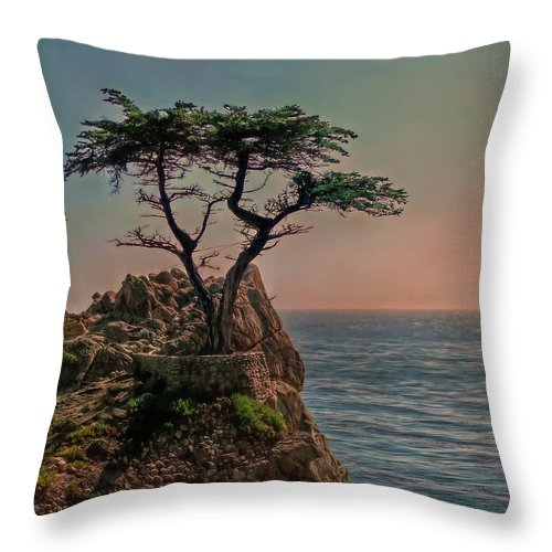 Cypress Throw Pillow featuring the photograph Photogenic Tree by Hanny Heim