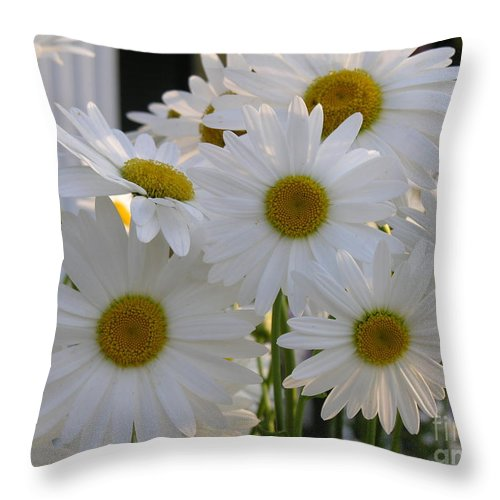 Dasiy Throw Pillow featuring the photograph Pick Me by Diane Greco-Lesser