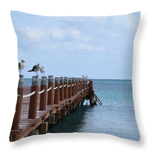 Birds Throw Pillow featuring the photograph Piers By The Ocean2 by Christina McNee-Geiger