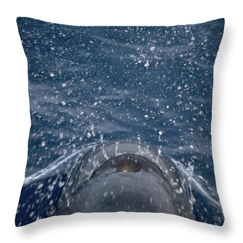 Valasretki Throw Pillow featuring the photograph Pilot Whale 7 The Breath by Jouko Lehto