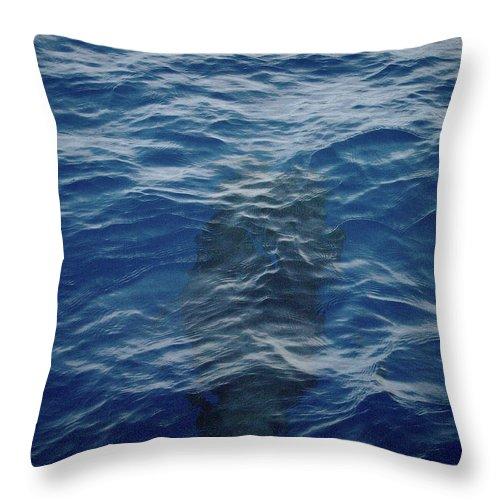 Valasretki Throw Pillow featuring the photograph Pilot Whale 8 by Jouko Lehto