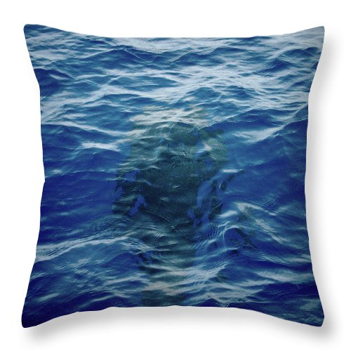 Valasretki Throw Pillow featuring the photograph Pilot Whale 9 The Mermaid by Jouko Lehto