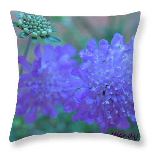 Butterfly Throw Pillow featuring the photograph Pin Cushion Flower by Wendy Fox