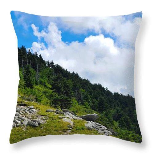 Sky Throw Pillow featuring the photograph Pine Ridge by Ric Schafer