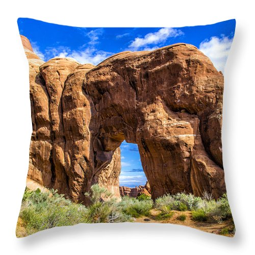 Arches Throw Pillow featuring the photograph Pine Tree Arch by Roberta Bragan