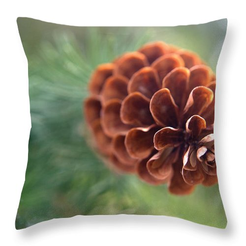 Pinecone Throw Pillow featuring the photograph Pinecone-1 by Steve Somerville