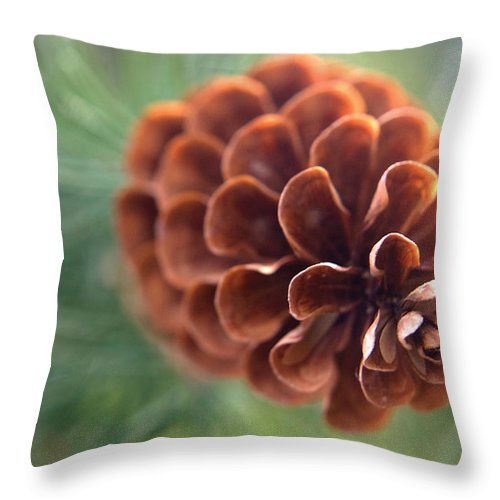 Nature Throw Pillow featuring the photograph Pinecone-2 by Steve Somerville