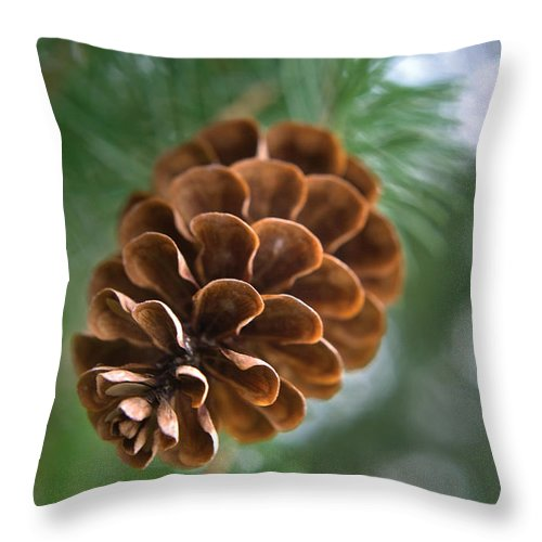 Nature Throw Pillow featuring the photograph Pinecone-3 by Steve Somerville