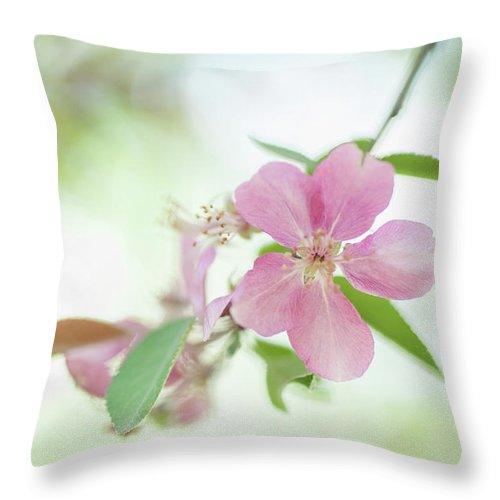 Jenny Rainbow Fine Art Photography Throw Pillow featuring the photograph Pink Airy Marvel by Jenny Rainbow