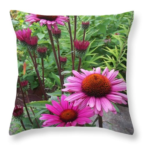 Flowers Throw Pillow featuring the photograph Pink All Over by Anita Burgermeister