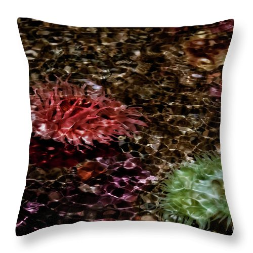 Abstract Throw Pillow featuring the photograph Pink And Green by Venetta Archer