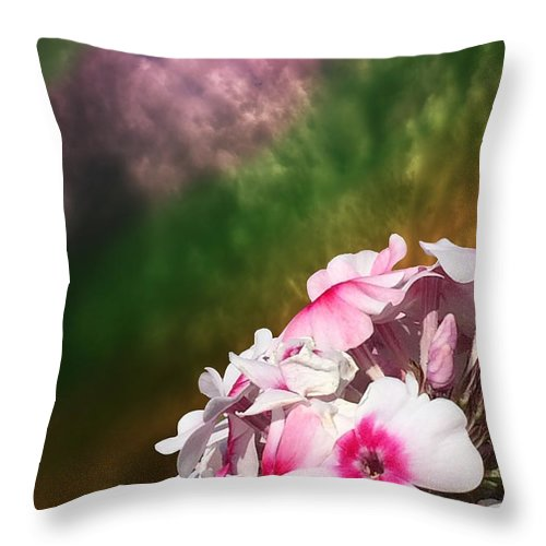 Flower Throw Pillow featuring the photograph Pink And White Flowers by Flavien Gillet