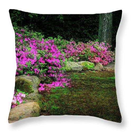 Tamyra Throw Pillow featuring the photograph Pink Azaleas At The Azalea Festival by Tamyra Ayles