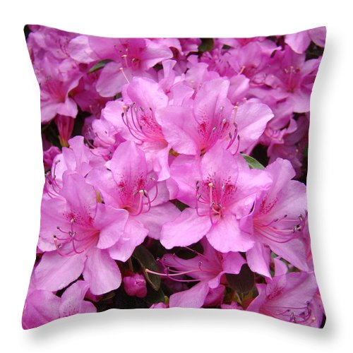 �azaleas Artwork� Throw Pillow featuring the photograph Pink Azaleas Summer Garden 6 Azalea Flowers Giclee Art Prints Baslee Troutman by Baslee Troutman
