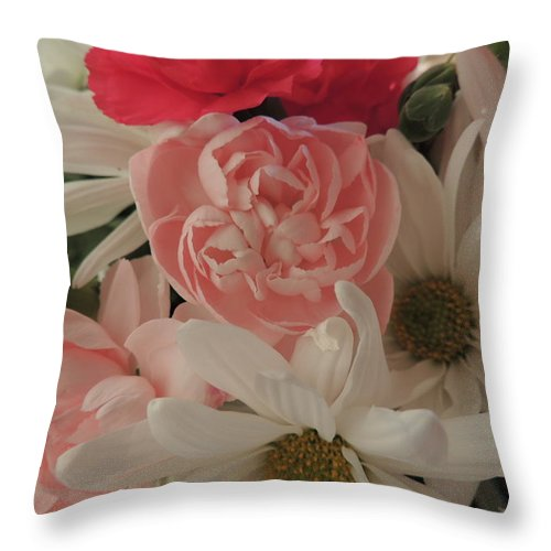 White Daisies Throw Pillow featuring the photograph Pink Baby by Traci Hallstrom