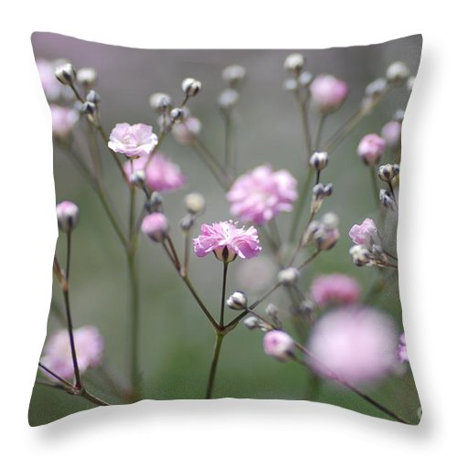 Flower Throw Pillow featuring the photograph Pink Blossom by Catherine Lau