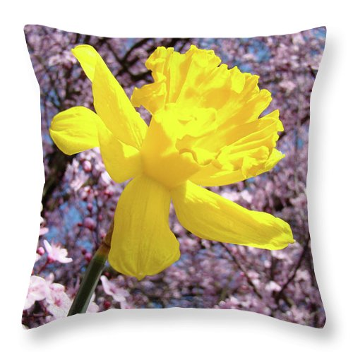 Nature Throw Pillow featuring the photograph Pink Blossom Spring Trees Yellow Daffodil Flower Baslee Troutman by Baslee Troutman
