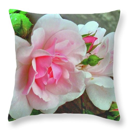 Pink Rose Photograph Throw Pillow featuring the photograph Pink Cluster Of Roses by Janette Boyd