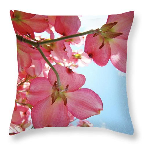 Dogwood Throw Pillow featuring the photograph Pink Flowering Dogwood Tree Art Prints Blue Sky Baslee Troutman by Baslee Troutman