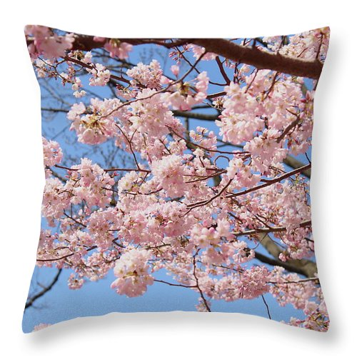 Pink Throw Pillow featuring the photograph Pink Fluffy Branches by Nadia Asfar