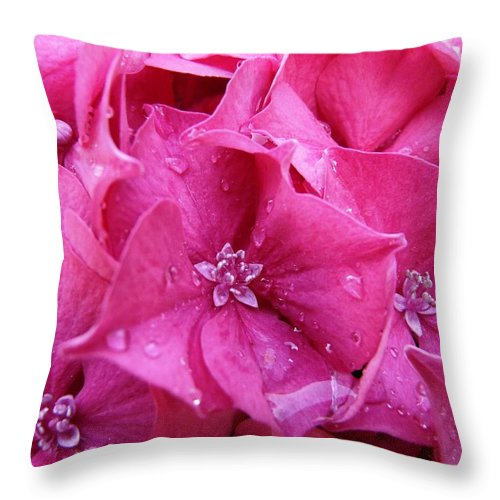 Flower Throw Pillow featuring the photograph Pink Hydrangea After Rain by Valerie Ornstein