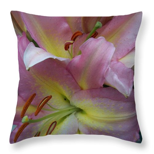 Flowers Throw Pillow featuring the photograph Pink Lillies by Anita Burgermeister
