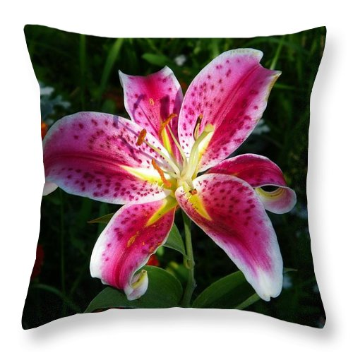 Day Throw Pillow featuring the photograph Pink Lilly by Tina Barnash