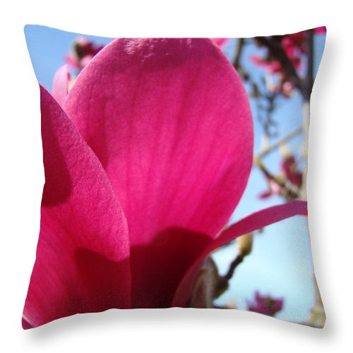Magnolia Throw Pillow featuring the photograph Pink Magnolia Flowers Magnolia Tree Spring Art by Baslee Troutman
