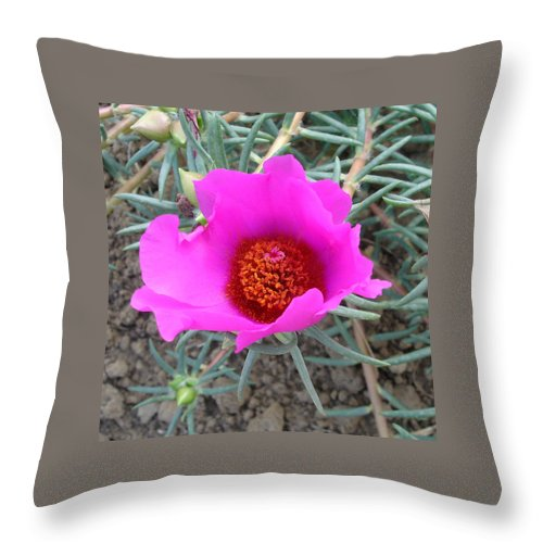 Flower Throw Pillow featuring the photograph Pink Or Wot by Susan Baker