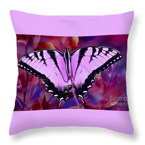 Butterfly Throw Pillow featuring the photograph Pink Purple Butterfly by Gina Welch