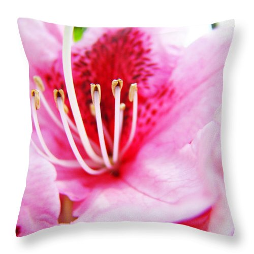 Rhodie Throw Pillow featuring the photograph Pink Rhodie Flowers Art Prints Canvas Rhododendrons Baslee Troutman by Baslee Troutman