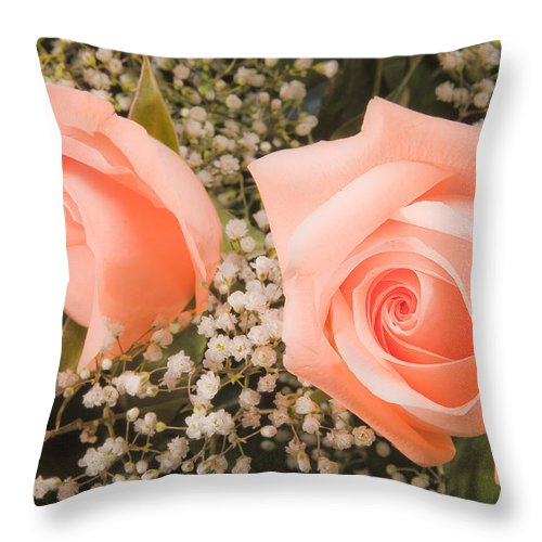 Roses Throw Pillow featuring the photograph Pink Roses Fine Art Photography Print by James BO Insogna