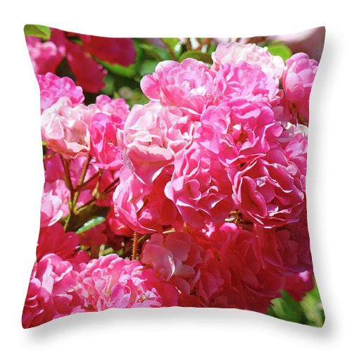 Rose Throw Pillow featuring the photograph Pink Roses Summer Rose Garden Roses Giclee Art Prints Baslee Troutman by Baslee Troutman