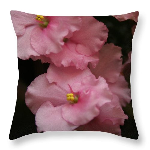 Flowers Throw Pillow featuring the photograph Pink Slippers by Rebecca Smith