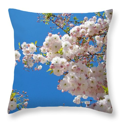 �blossoms Artwork� Throw Pillow featuring the photograph Pink Tree Blossoms Art Prints 55 Spring Flowers Blue Sky Landscape by Baslee Troutman