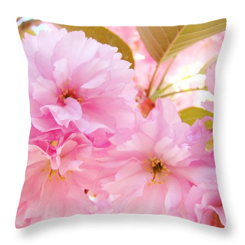Blossom Throw Pillow featuring the photograph Pink Tree Blossoms Art Prints Spring Blossoms Baslee Troutman by Baslee Troutman