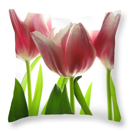 Tulip Throw Pillow featuring the photograph Pink Tulips by Jane Linders