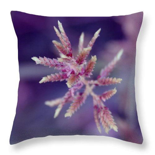 Nature Throw Pillow featuring the photograph Pink Weed by Linda Sannuti