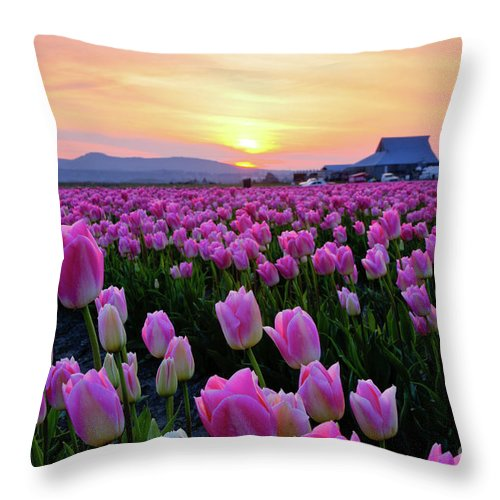 Tulips Throw Pillow featuring the photograph Pinks At Sunset by Idaho Scenic Images Linda Lantzy